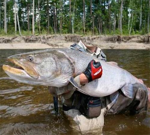 с фото фотошопа рыбака рыбой для