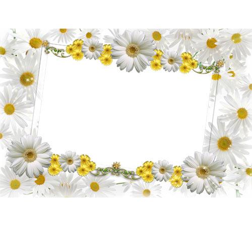 Как рисовать по шаблону цветы